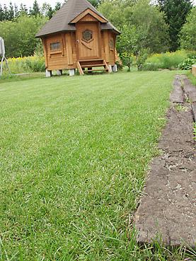 刈り上げたばかりの芝生