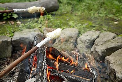 焚き火パン焼いてます。