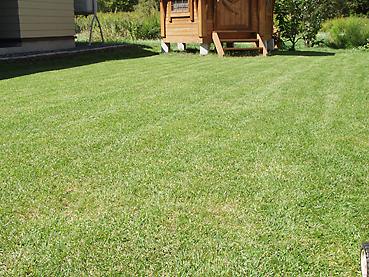 芝刈り完了