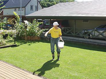 芝生の肥料まき