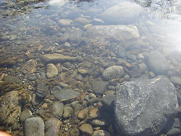 ヌップク川