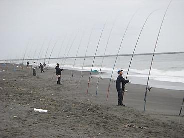 北海道・十勝沿岸での鮭釣り情報! 長節湖付近の海岸線でポツポツと釣れ始めています。