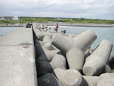北海道・十勝沿岸での鮭釣り情報! 十勝の旭浜漁港の防波堤で結構釣れています!